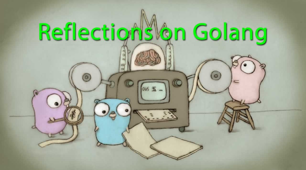 Discussion of reflections on Golang