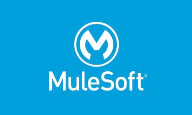 What is Mulesoft ESB?