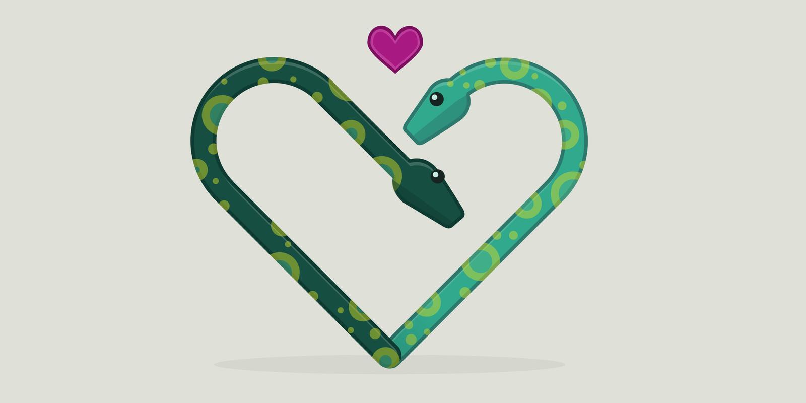 Generate QR Code using Python—Python Programming—PyShark