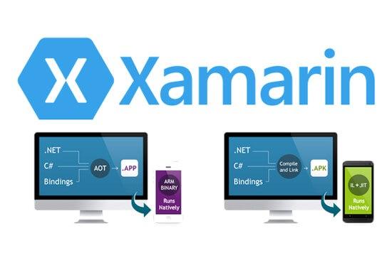 Xamarin Consulting Services