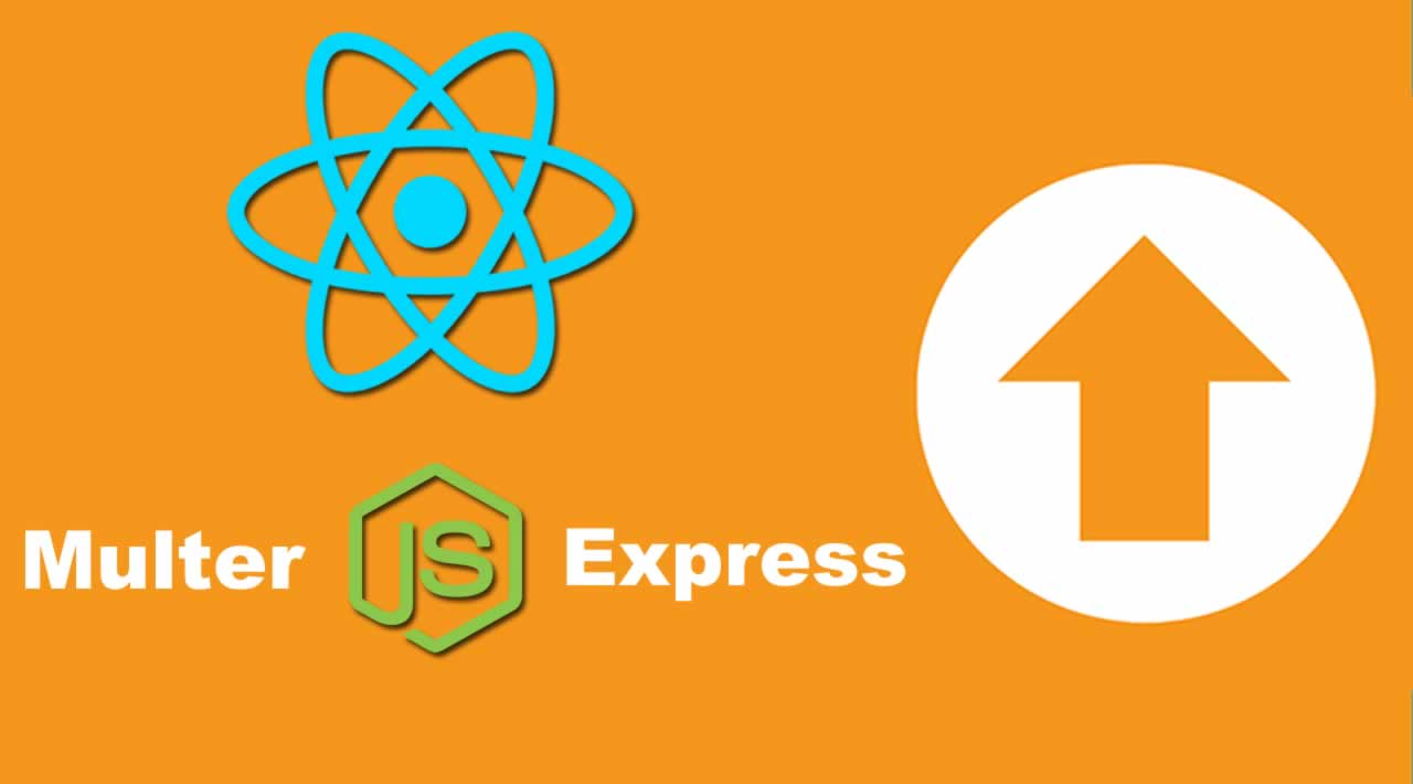 How to upload a file in the React application with Node, Express and Multer