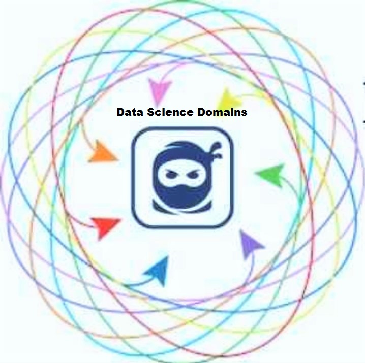 What NOT to Do in the Data Science Domains Industry