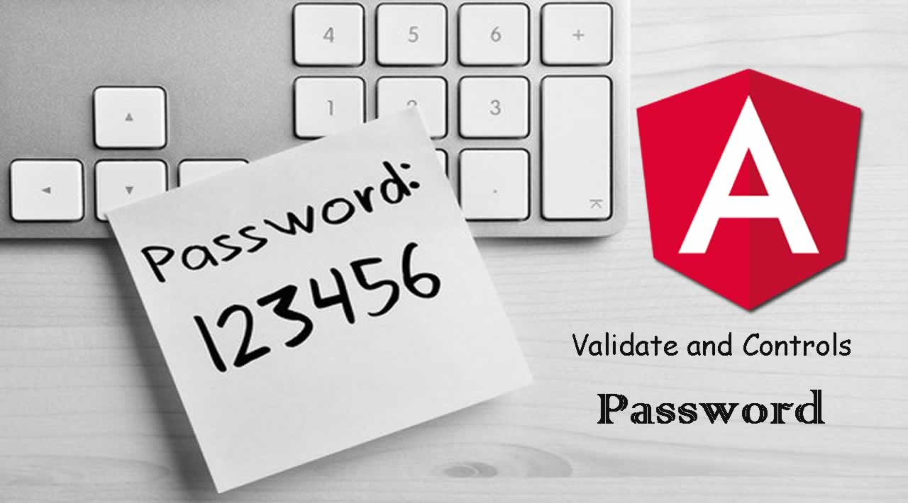 How to Validation and Controls Password in Angular