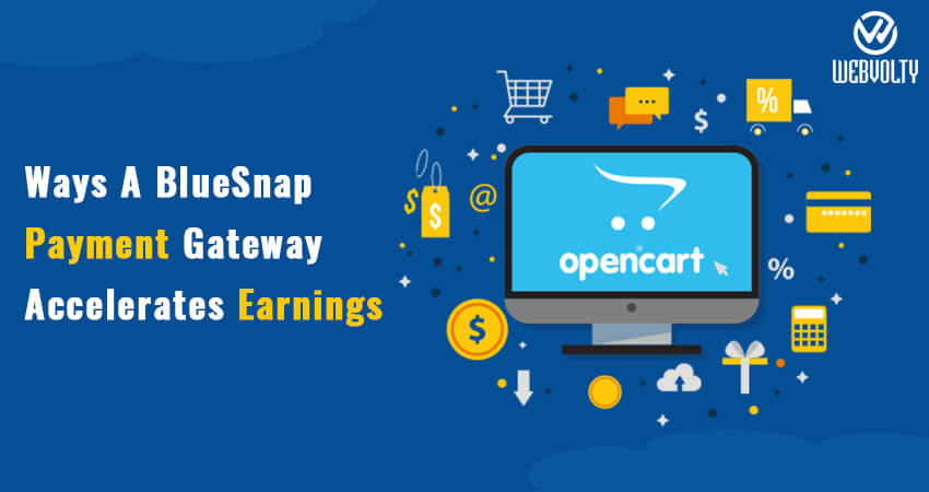 Ways A BlueSnap Payment Gateway Accelerates Earnings