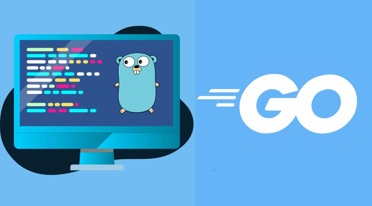 How To Use Command Line Flags in Golang with Example