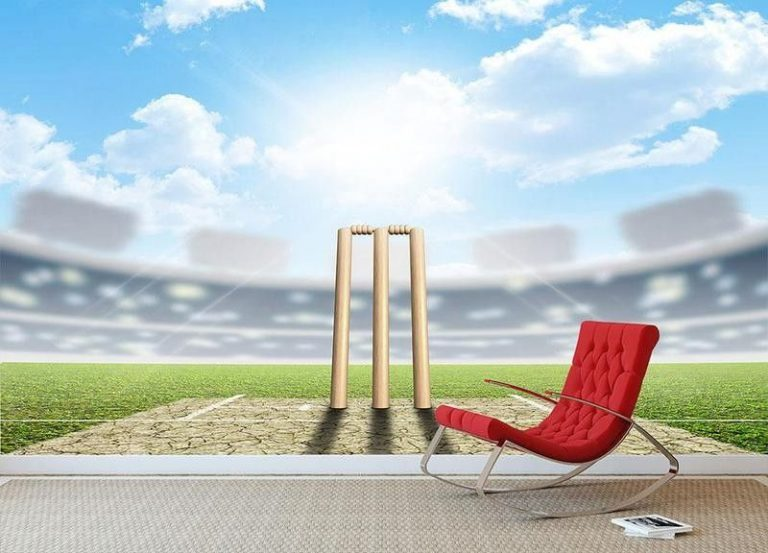 Trustworthy Fantasy Cricket Website Development Service Provider