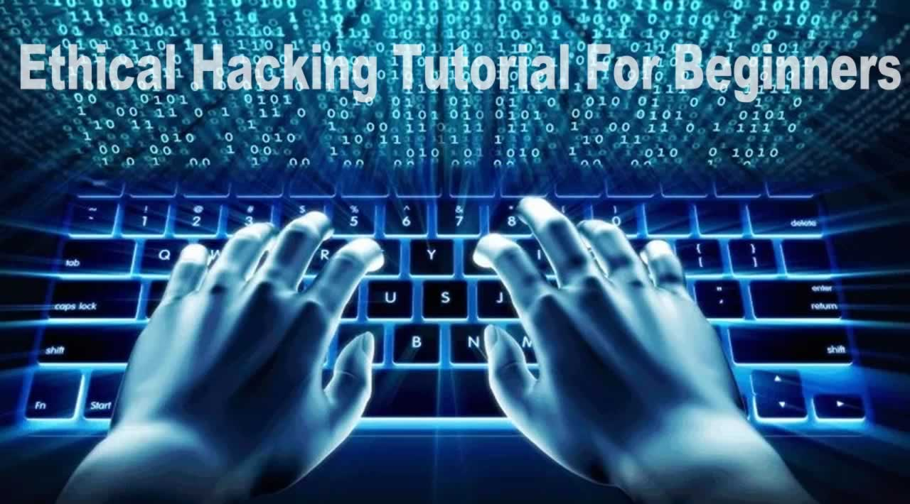 Ethical Hacking And Penetration Testing Guide for Beginners