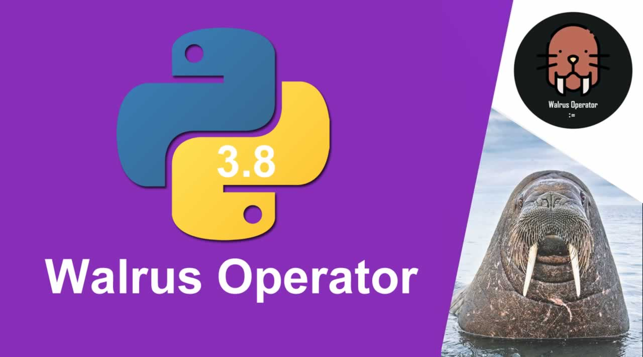 The Python Walrus Operator    New changes in python 3.8