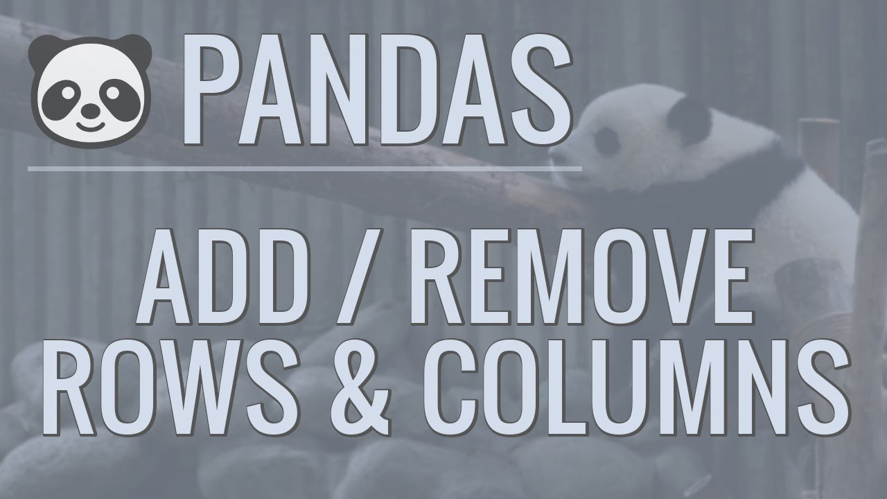 Python Pandas Tutorial: Add/Remove Rows and Columns From DataFrames