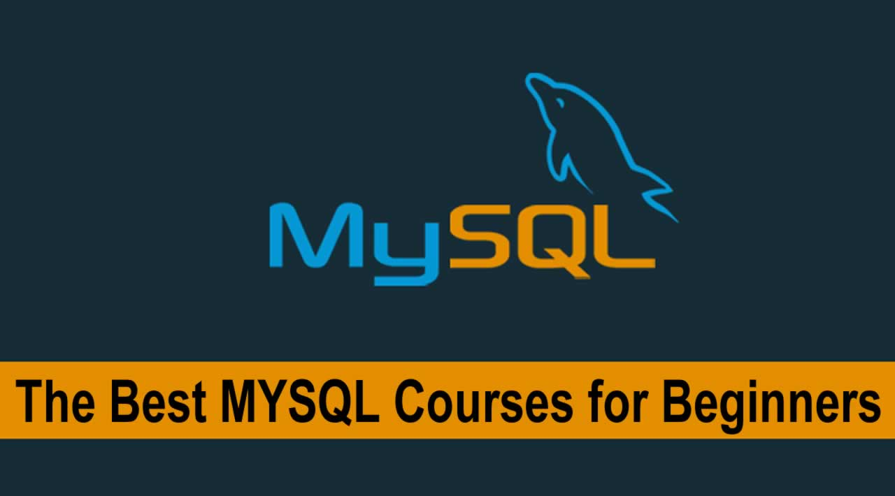 The Best MYSQL Courses for Beginners