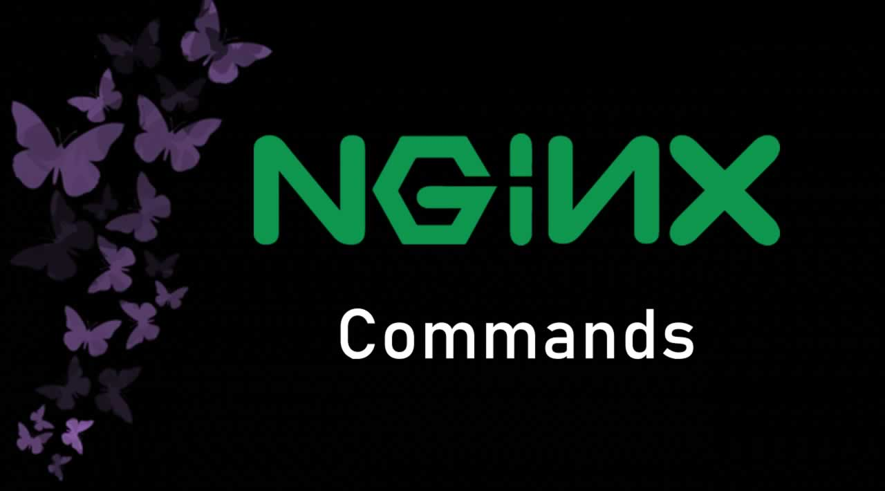 Nginx Commands - Every Developer Should Know