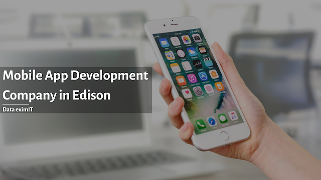 Mobile App Development Company in Edison