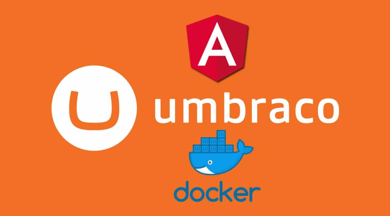 How to Run Umbraco with Angular and Docker