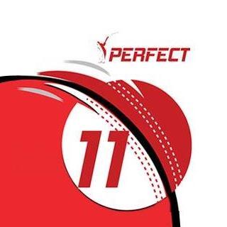 perfect11 fantasy