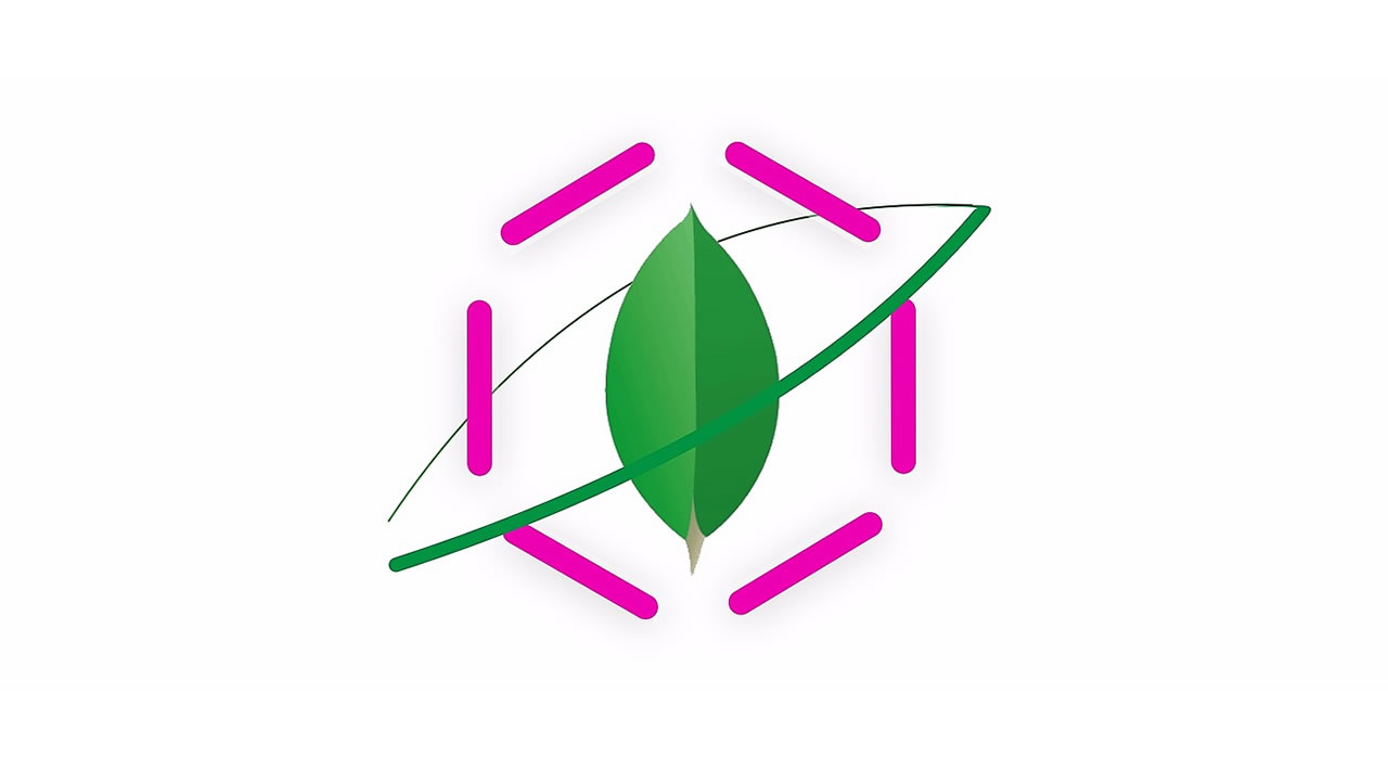 Developing with GraphQL and MongoDB