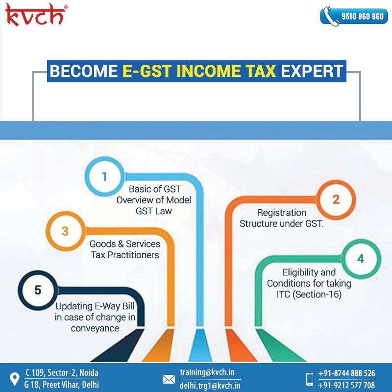 E-Accounts, E-Taxation E-GST | Practical Training Course