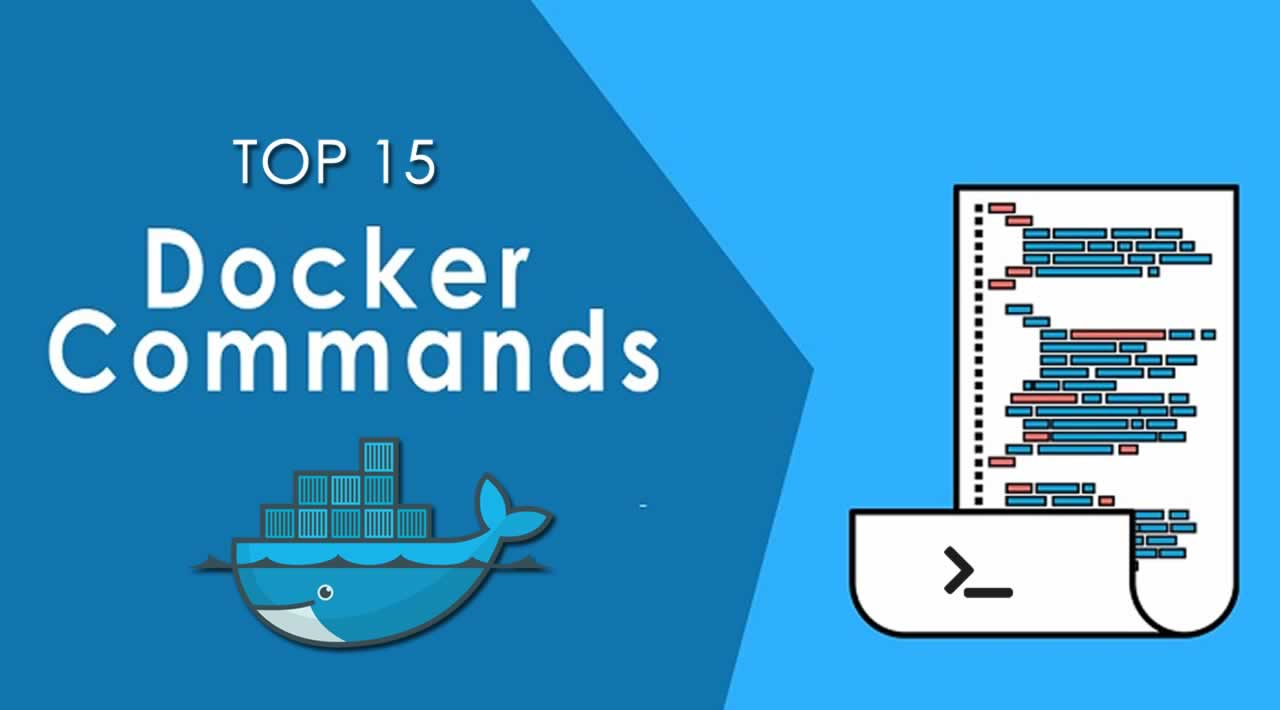 Top 15 Docker Commands You Should Know