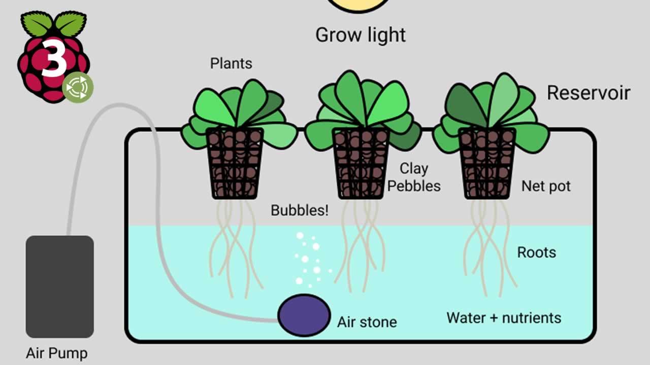 Building a Smart Garden With Raspberry Pi 3B+