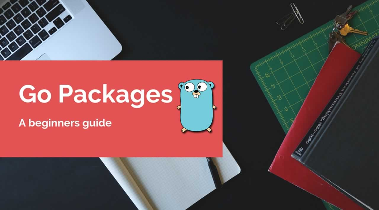 A beginners guide to writing Go packages