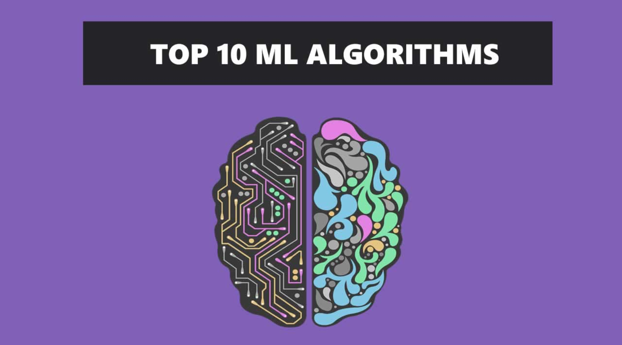 Top 10 Machine Learning Algorithms You Should Know to Become a Data Scientist
