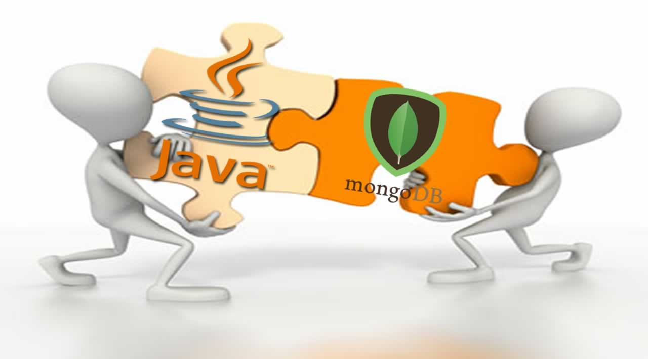 Explore MongoDB in a Java application for basic usage.