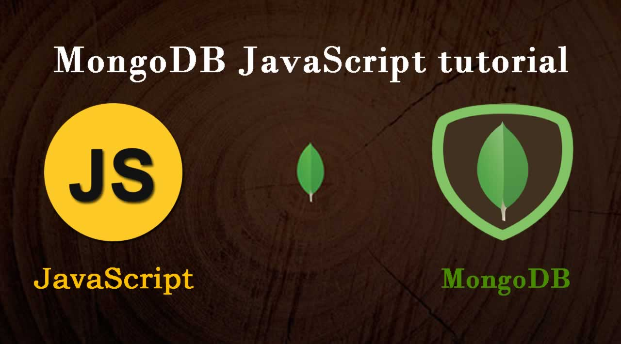 MongoDB JavaScript tutorial with Examples