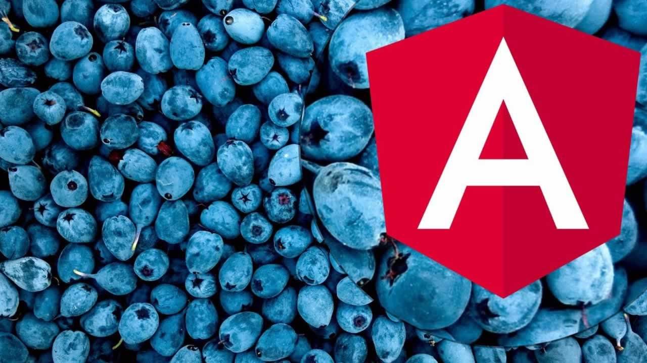 An Angular Roadmap — The Past, Present, and Future of Angular