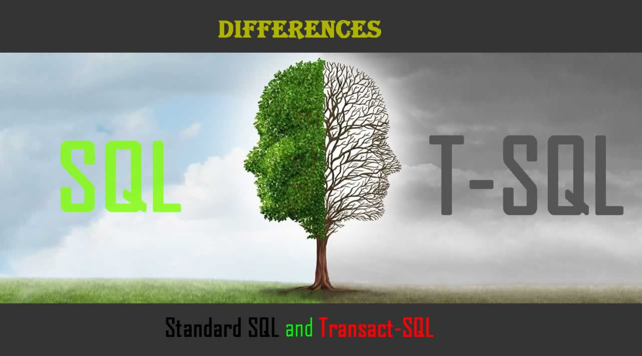 What are the differences between Standard SQL and Transact-SQL?