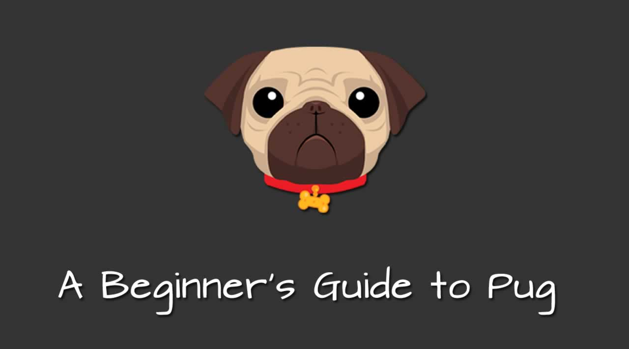 A Beginner's Guide to Pug